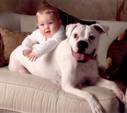 Introducing Your Dog to a New Baby